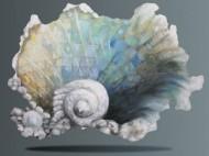 Sea Shell by Sandi Billingsley