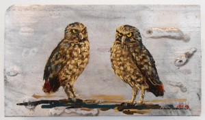 Burrowing Owls by Jeff Hemming