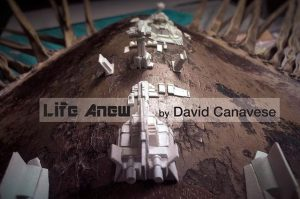 Life Anew by David Canavese