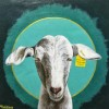 Goat Cheese is the New Veal by Michelle Waters