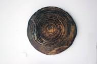 Lustre Tree Rings 2 by Andrew Irvine
