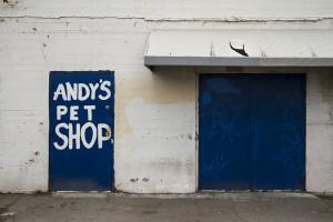 Andy's Door by Josh Marcotte